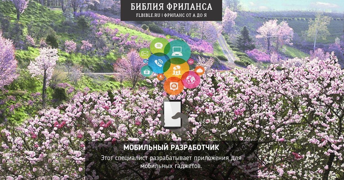 mobilnyi razrabotchik
